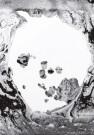 La moon shaped pool, Radiohead